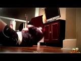 Смешные кошки, нарезка роликов о домашних животных