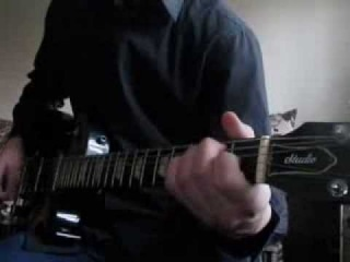 Flamingo Man Metallica's version guitar cover by Sklif