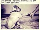 Варя Потёмкина фото #4