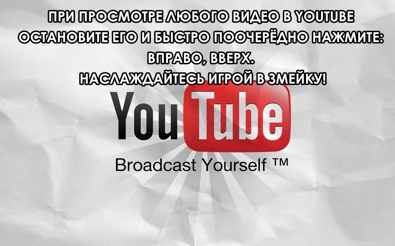 http://cs14114.vk.me/c7007/v7007559/130c3/L5vjFCLSBXY.jpg