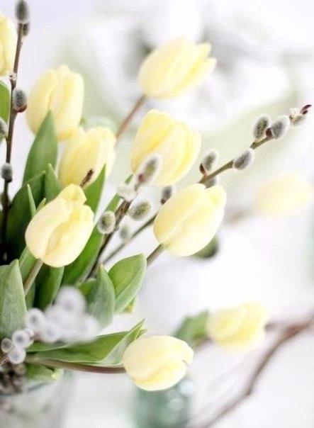 Ты решаешь, когда весна начнется в твоей жизни.