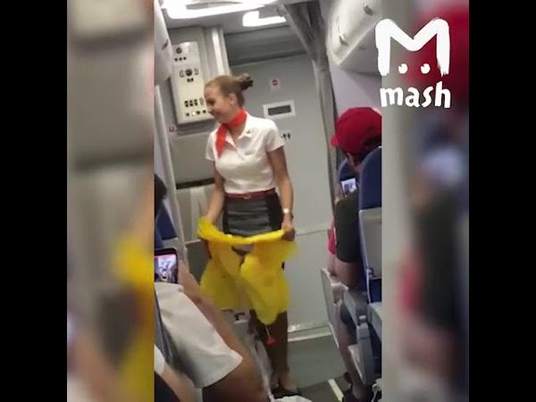 Болельщики сборной Бразилии поддерживают и очень смущают российских стюардесс.