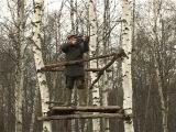 Загонная охота на лося в Ярославской области. часть 1