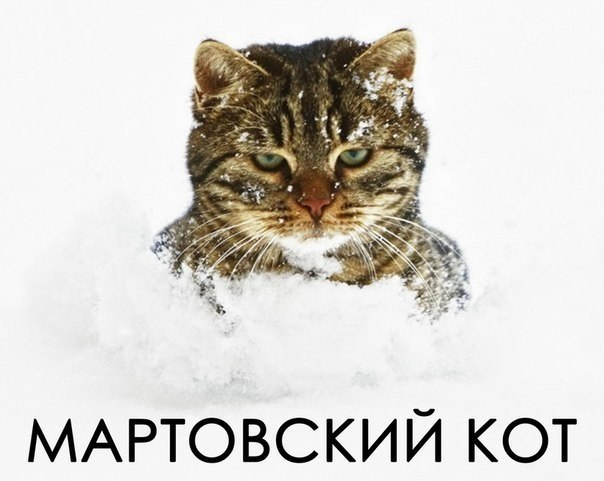 фото из альбома Виталия Федюкова №3