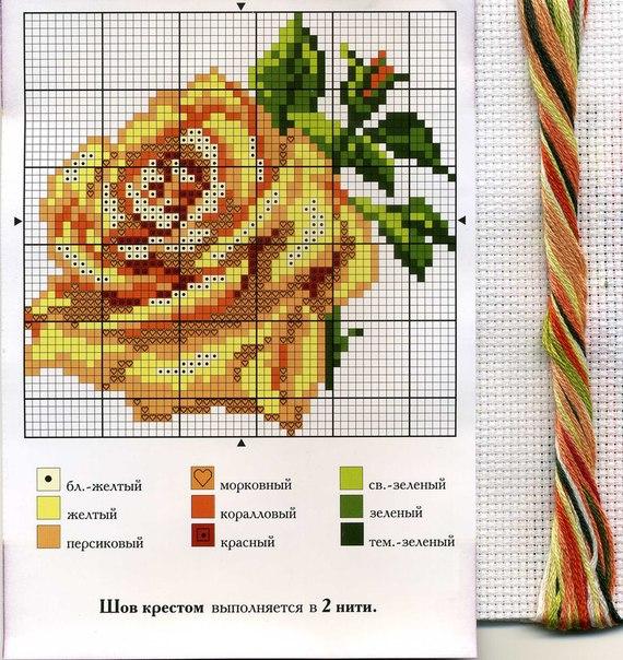 Алиса розы вышивка скачать 172