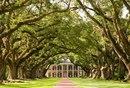 Сказочные пейзажи штата Луизиана