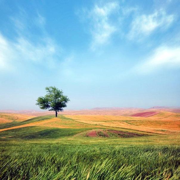 Грани природной гармонии в пейзажах удивительной красоты Красота вокруг нас, она наполняет наш мир, как легкие наполняет воздух. Каждой природный сезон приносит новые краски, природа