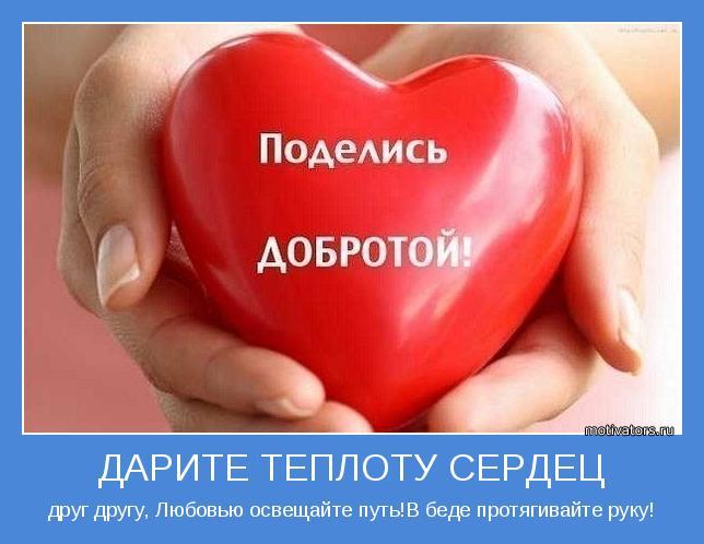 Светлана Холкина  