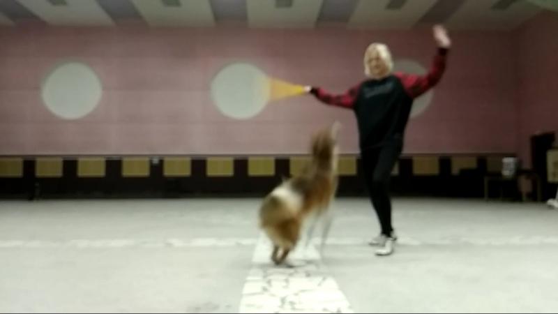 Романова Анна и Фель Жёлтые Танец с реквизитом