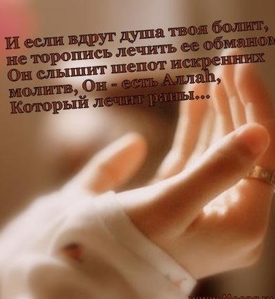 Амина Магомедова, 1 января 1988, Иркутск, id215925289