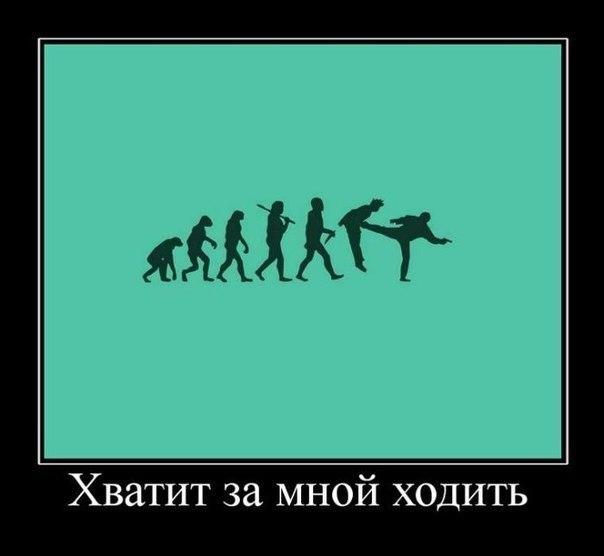 http://cs14115.userapi.com/c7008/v7008113/2227/XfbScuXcDBQ.jpg