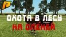 Barbaro Channel снял охоту на оленей (Radmir CRMP)