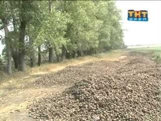 Уничтожение плодородного слоя почвы.