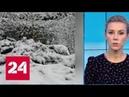 Погода 24 центральная Россия в снежном плену Россия 24