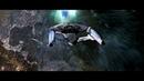 Star Trek: The Borg