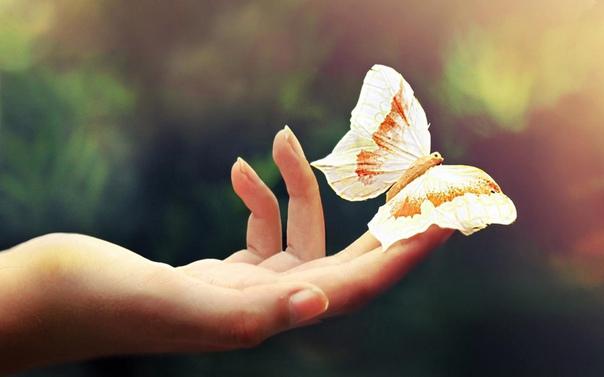 Счастливого человека очень просто узнать. Он словно излучает ауру спокойствия и тепла, движется неторопливо, но везде успевает, говорит спокойно, но его все понимают. Секрет счастливых людей прост - это отсутствие напряжения.
