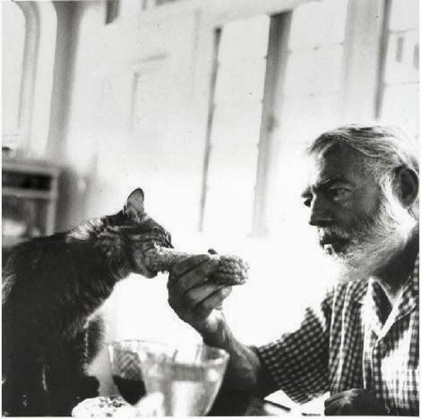 «Я писатель и я не хочу ничего сочинять! Я хочу фотографироваться с котиком».