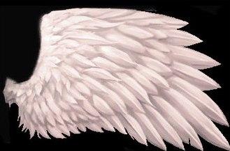 Как сделать крылья из пакета