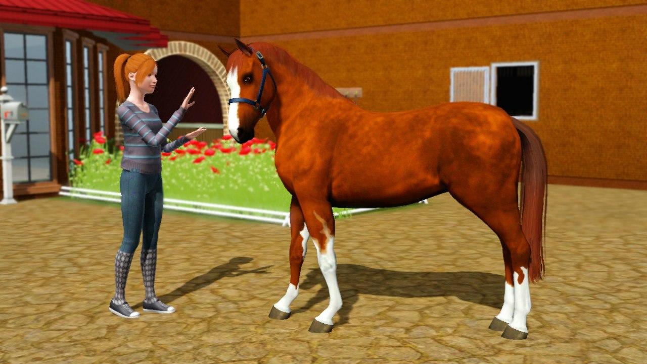 Заявки на удаление лошади из списка - Страница 2 D5SYnzENXMc