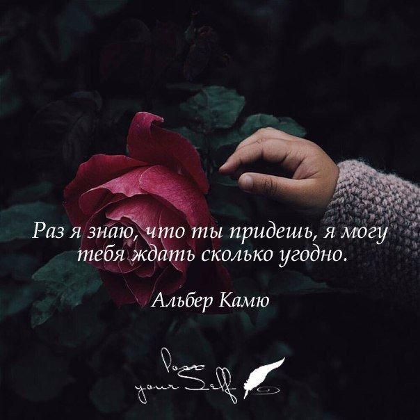 https://pp.vk.me/c635104/v635104731/140f7/vxOIczPcp6k.jpg