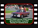 Cherry Festival Street Parade @ The 69th Annual National Cherry Festival Young 01122018