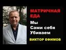 Матричная еда Мы сами себя убиваем Виктор Ефимов