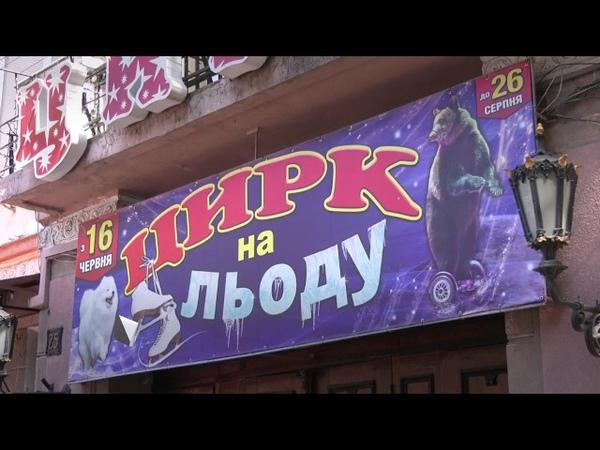Эко зоорасты прессуют Одесский цирк 2018 FHD