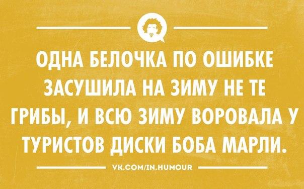 http://cs620516.vk.me/v620516486/8b0/5lJl4Y91eE0.jpg