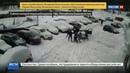 Новости на Россия 24 • Массовая драка в Уфе: хулиганы с битами не дали жильцам расчистить двор