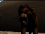 Король Лев в 3D!