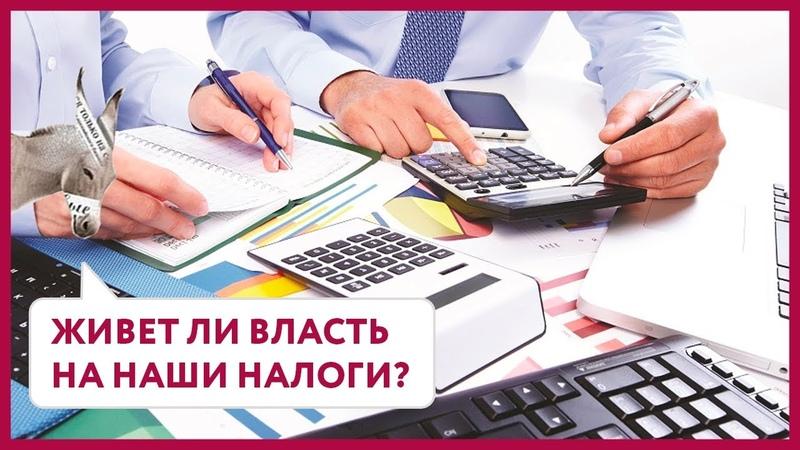 Живет ли власть на наши налоги? | Уши Машут Ослом 30 (О. Матвейчев)