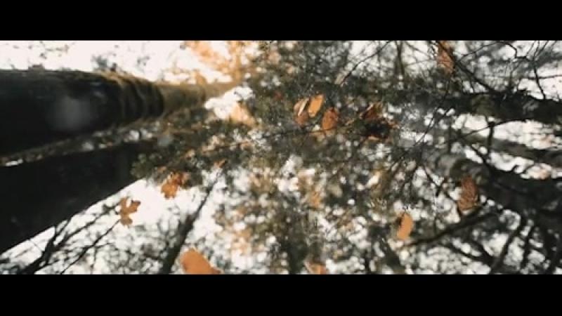 Шурши листьями! 🍁Дыши лесом! Люби осень!🍂