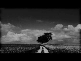 Didactic Scalica - Dreamer (Pozitive Remix)