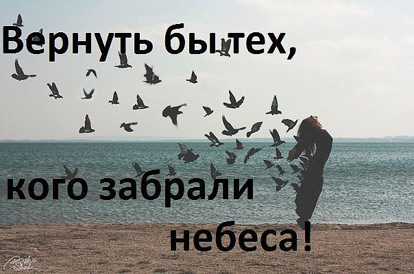 Роман Иванов |