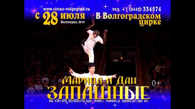 Волгоградский цирк Запашные только в августе!