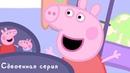 Свинка Пеппа - S01 E01-02 (Лужи / Динозаврик потерялся!)