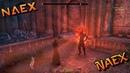 The Elder Scrolls Online: Summerset - Templar CP 770-771 - Questing in Summerset