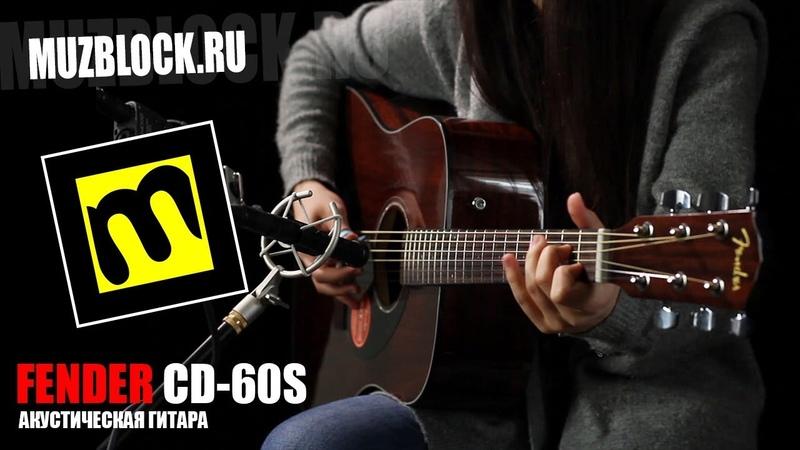 Fender CD-60S - обзор акустической гитары