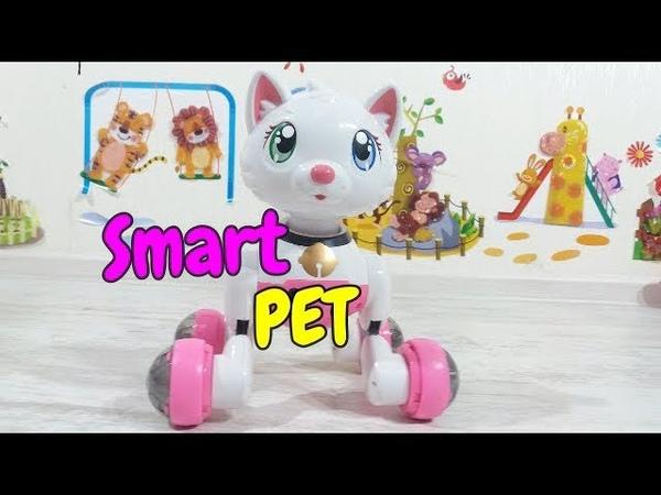 Cindy Smart Pet Интерактивная кошечка Синди.