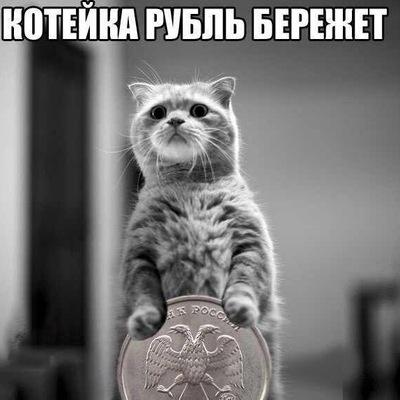 Дима Неволин, Санкт-Петербург, id95389592