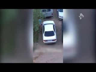 Разгневанная дама с дубиной отомстила неверному мужу в Якутии