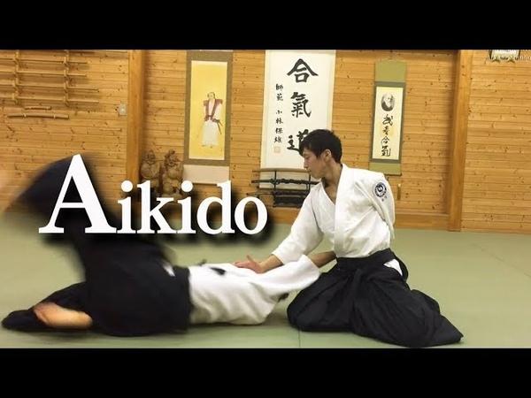 美しい合気道 自由技 Beautiful dynamic Aikido ‐ Freestyle techniques
