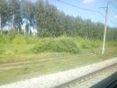 Снято из поезда 68 Москва - Абакан, линия Тюмень - Ишим