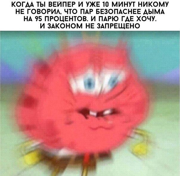 Кокциг