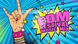 Festival Mix - Best EDM Electro House Music Mix