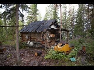 Профессиональная охота в Западной Сибири с гибридом волка и лайки. Казис Буошка. Часть 1