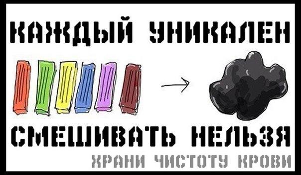 Мотиваторы  MygTyyFK3ug