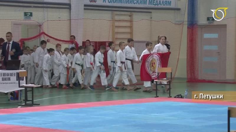 Соревнованиях по каратэ Сётокан.mp4