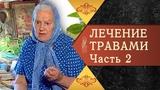 Полный цикл бесед О ЛЕЧЕНИИ ТРАВАМИ. Е. Ф. Зайцева - Фильм 2