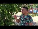 Данир Сабиров Шомырт чәчәге: искечә яңа клип